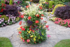 Украшение садовых дорожек цветами