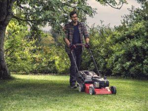 Путь к идеальному газону или как выбрать газонокосилку