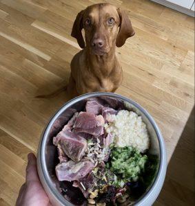Правильное кормление собак - система питания БАРФ