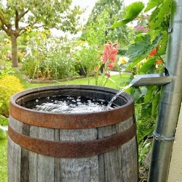 Использование дождевой воды в саду