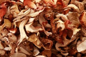 Как можно сохранить грибы