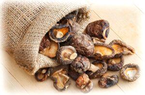 Как правильно сушить лесные грибы в домашних условиях