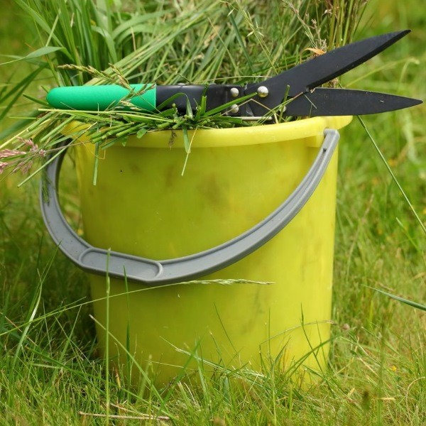 Бесплатные органические удобрения из растений