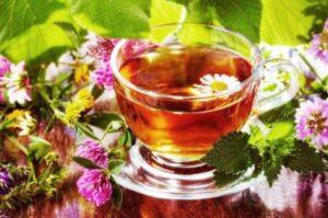 Домашняя аптека: травяные чаи для похудения