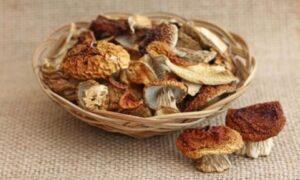 Как работать с сушеными грибами