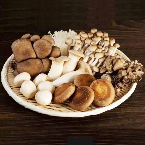 Как сделать грибы более усваиваемыми