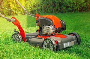 Роторная газонокосилка выбираем лучшую