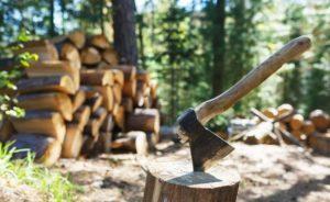 Как выбрать топор для колки дров правильно