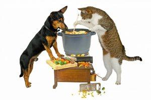 Подходящая еда для собак и кошек