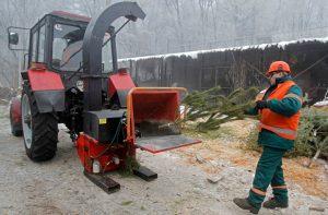 Утилизация дерева