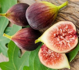 Инжир коричневый турецкий плодоношение