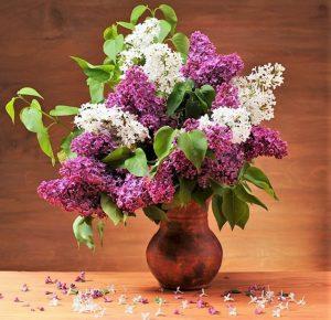 Сиреневые цветы съедобны
