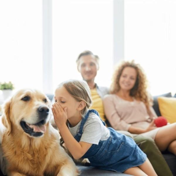 Самые идеальные породы собак для семьи