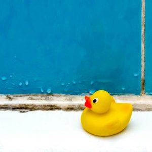Как избавиться от плесени в ванной и почему она образуется