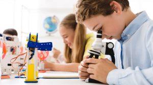Что выбрать для начальной или средней школы
