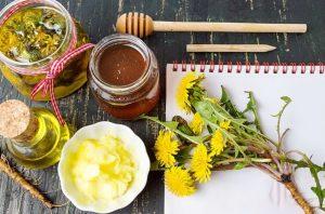 Лечебные свойства одуванчика - лучшие рецепты