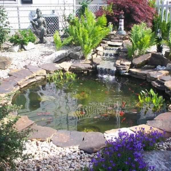 Уход за садовым прудом весной - что нужно делать