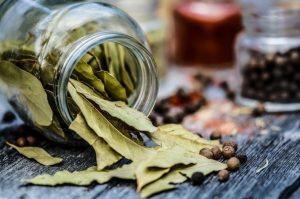 Как лучше употреблять срезанные листья лаврового листа