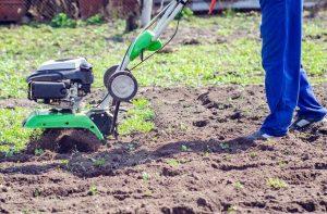 Вы знаете, как узнать кислотность почвы на участке