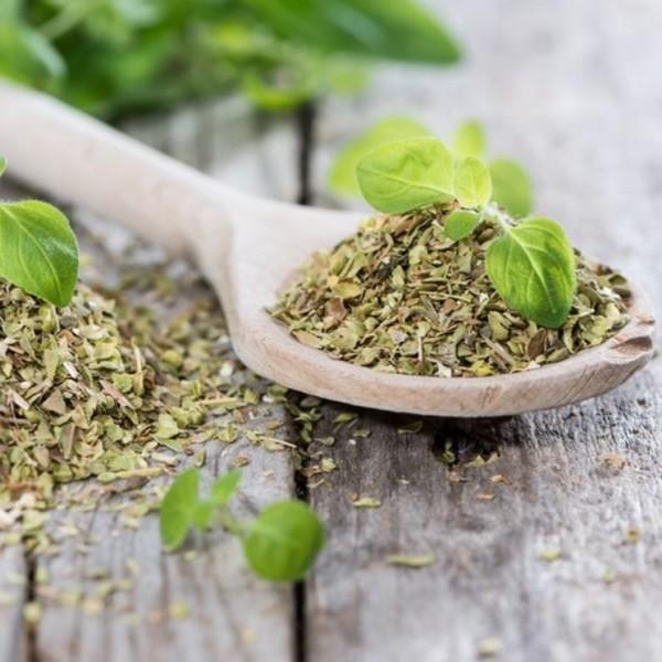 Лучшие успокоительные травы для нервной системы