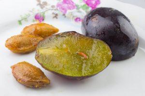 Обработка сливы от червей в плодах - профилактика