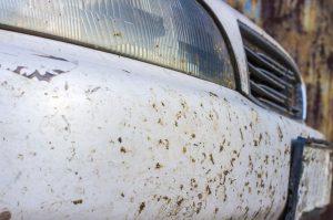 Как отмыть мошек с автомобиля - эффективные способы