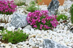 Камни для клумб