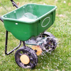 Подкормка газона осенью - что именно нужно делать