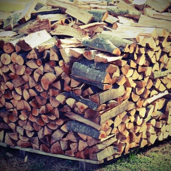Правильное хранение дров на зиму